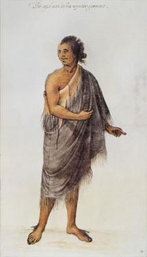 Old Indian Man by John White