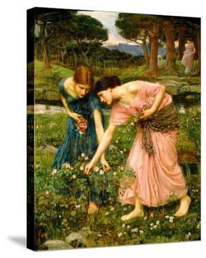Gather Ye Rosebuds While Ye May by John William Waterhouse