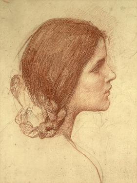 Head of a Girl, c.1905 by John William Waterhouse