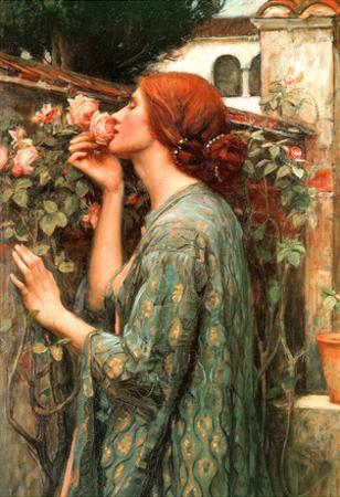 John William Waterhouse My Sweet Rose Art Print Poster