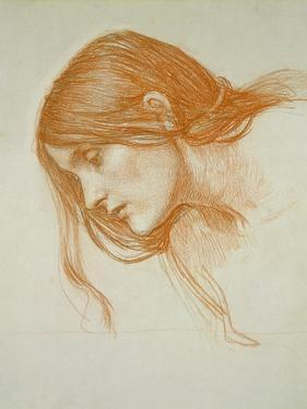 Study of a Girl's Head (Red Chalk on Paper) by John William Waterhouse