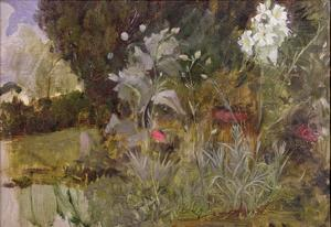 Study of Flowers and Foliage, for 'The Enchanted Garden' by John William Waterhouse