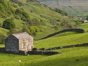 Typical Stone Barns Near Keld in Swaledale, Yorkshire Dales National Park, Yorkshire, England by John Woodworth