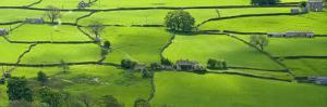 View across the Yorkshire Dales Near Reeth in Swaledale, Yorkshire by John Woodworth