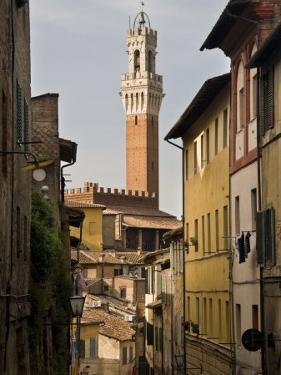 View of the Torre Del Mangia and Old Streets in Siena, Tuscany, Italy, Europe by John Woodworth