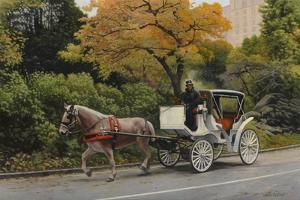 Carriage at Central Park by John Zaccheo