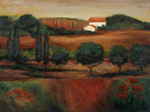 Crimson Light in Tuscany by John Zaccheo