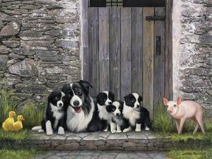 Farm Animal Stable by John Zaccheo