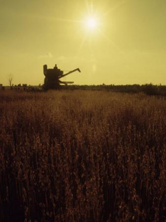 Combine Harvester in Field at Sunset