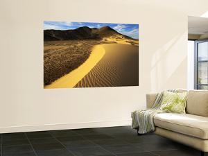 Evening Sunlight on Sand Dune by Johnny Haglund