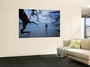 Man on Beach with Trees by Johnny Haglund