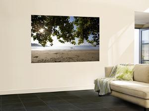 Sunrise Through Leaves at Beach of Charlies Eek Island by Johnny Haglund