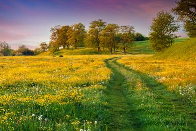 Colorful Summer Sunrise in the Countryside with Road by jojjik