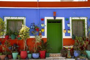 Asilah, Morocco. Multi-colored house with potted plants by Jolly Sienda