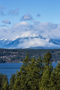Bremerton, Washington State. Mount Constance looms over the Puget Sound by Jolly Sienda