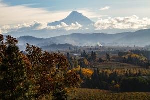 USA, Oregon. Mount Hood autumn landscape scenery. by Jolly Sienda