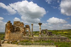 Volubilis, Morocco. Ancient Roman basilica ruins and a Marabou Stork by Jolly Sienda