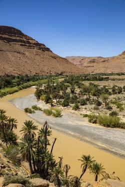 Ziz Valley, Morocco. Ziz Valley Gorge and palm trees by Jolly Sienda