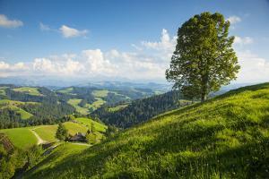 Emmental Valley, Berner Oberland, Switzerland by Jon Arnold