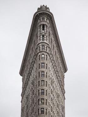 Flatiron Building, Manhattan, New York City, New York, USA by Jon Arnold