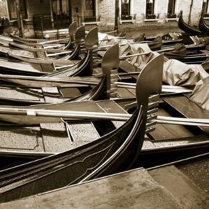 Gondolas, Venice, Italy by Jon Arnold