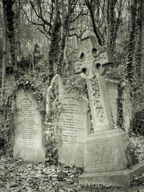 Highgate Cemetery, London, England by Jon Arnold