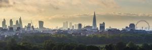 London Skyline with the Shard Above Hyde Park, London, England, Uk by Jon Arnold