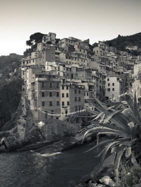 Riomaggiore, Cinque Terre, Riviera Di Levante, Liguria, Italy by Jon Arnold