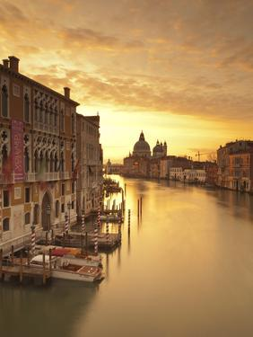 Santa Maria Della Salute, Grand Canal, Venice, Italy by Jon Arnold