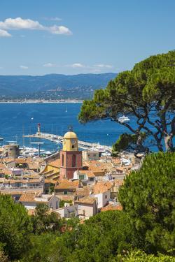 St. Tropez, Var, Provence-Alpes-Cote D'Azur, French Riviera, France by Jon Arnold