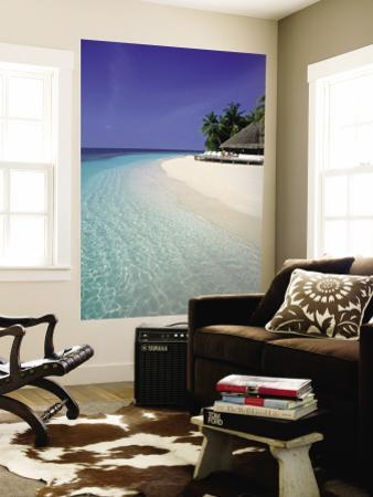 Affordable Coastal Tropical Landscapes Wall Murals Posters for