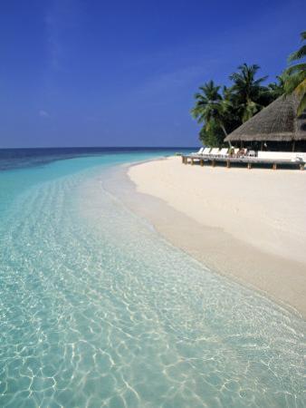 Tropical Beach, Maldives, Indian Ocean by Jon Arnold
