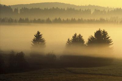 Misty Ridge II