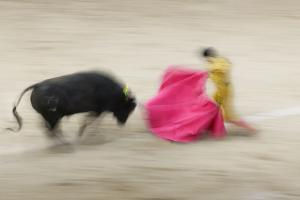 Bullfight in the Plaza De Toros Monumental De Las Ventas by Jon Hicks