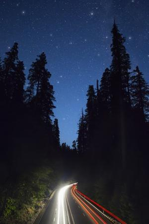Highway 101 and the Avenue of the Giants at Night.