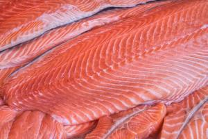 Salmon Fillets for Sale in Fish Market by Jon Hicks