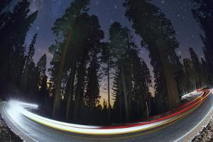Sequoia National Park at Night by Jon Hicks