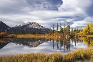 Autumn foliage and mountain lake, Jasper National Park, UNESCO World Heritage Site, Canadian Rockie by Jon Reaves