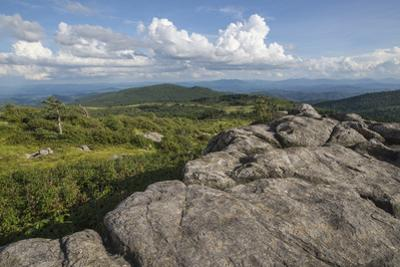 View from one of the many rocky summits of Grayson Highlands State Park, Virginia, United States of by Jon Reaves