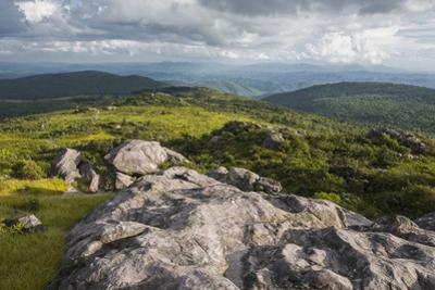 View of Appalachian Mountains from Grayson Highlands, Virginia, United States of America, North Ame by Jon Reaves