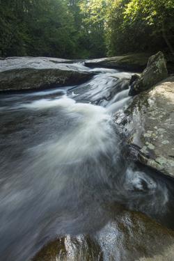Waterfall, Blue Ridge Mountains, North Carolina, United States of America, North America by Jon Reaves