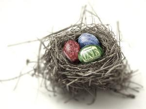 US Money Painted on Eggs in Nest by Jon Riley