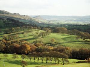 Landscape Near Wincle, Cheshire, England, United Kingdom by Jonathan Hodson