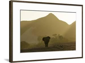 A Desert-Adapted African Elephant, Loxodonta Africana, Walking in a Hazy Landscape of Hills by Jonathan Irish