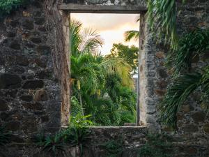 A Window from Within Sugarmill Ruins in Virgin Islands National Park by Jonathan Irish