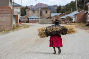An Aymara Indian Woman Carrying a Bundle of Straw by Jonathan Irish