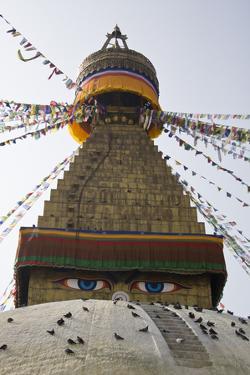 The Famous Buddhist Bodhnath Stupa with Prayer Flags by Jonathan Irish