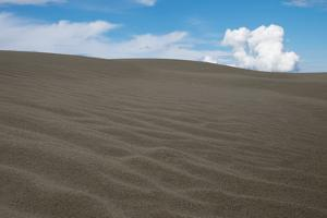 The Kobuk Sand Dunes in Kobuk Valley National Park. by Jonathan Irish