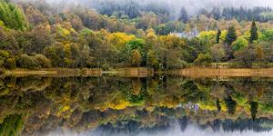 Tigh Mor Castle Peaks Out from Autumn Colors Reflected in Loch Achray Trossachs, Scotland by Jonathan Irish