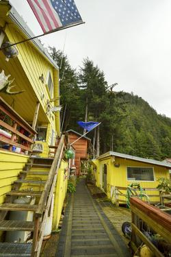 A Bright Yellow Home Adorned with the Alaska State Flag, the American Flag, and Moose Antlers by Jonathan Kingston
